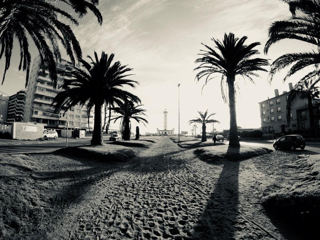 ラ・セレナのビーチへと続く道